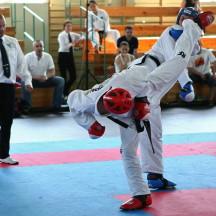 Mistrzostwa Polski Seniorów w Taekwon-do. Częstochowa 7-8 czerwca 2014. (fot. J. Jedut)