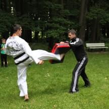 Pokaz Taekwon-do