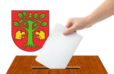 Wybory gm. Lubartów