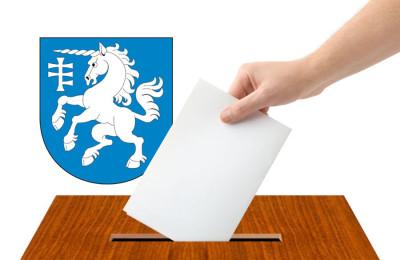 Wybory Serniki