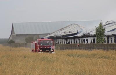 Pożar fermy drobiu w Głębokiem (fot. PL)