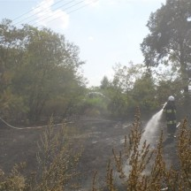 Chudowala pożar lasu