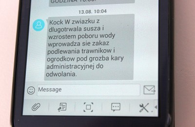 kock_susza