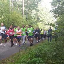 biegi lasy 2015  -6