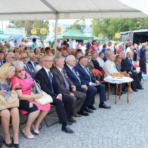 dozynki_powiatowe_powiatu_lubartowskiego_2016_046
