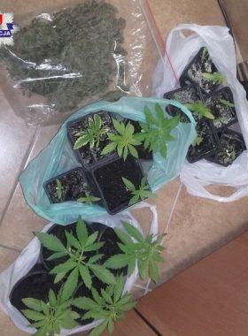 narkotyki68-107216